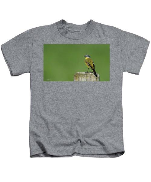 Yellow Wagtail Perching On The Roundpole Kids T-Shirt