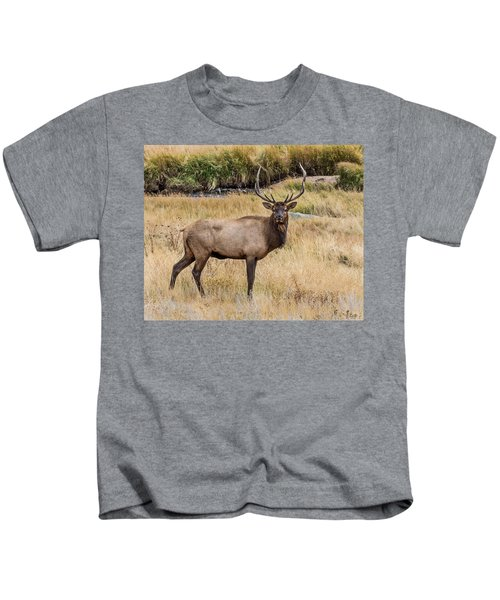 Young Bull Elk Kids T-Shirt