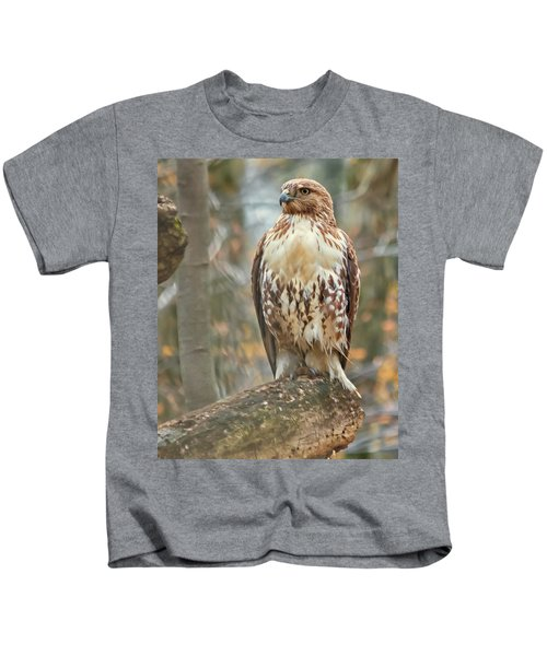 Young Red Tailed Hawk  Kids T-Shirt