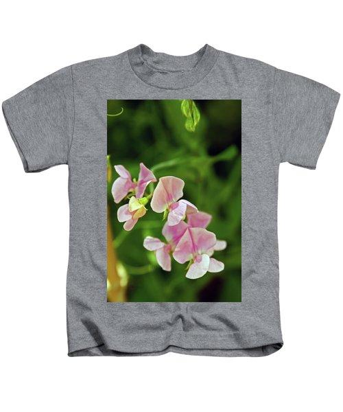 21/07/14  Chorley.  Astley Hall. Kids T-Shirt