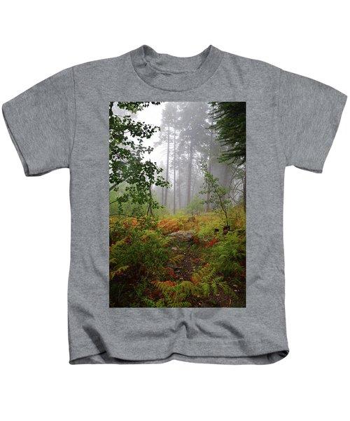 Autumn Fog  Kids T-Shirt