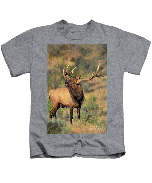 Bull Elk In Rut Bugling Yellowstone Wyoming Wildlife Kids T-Shirt