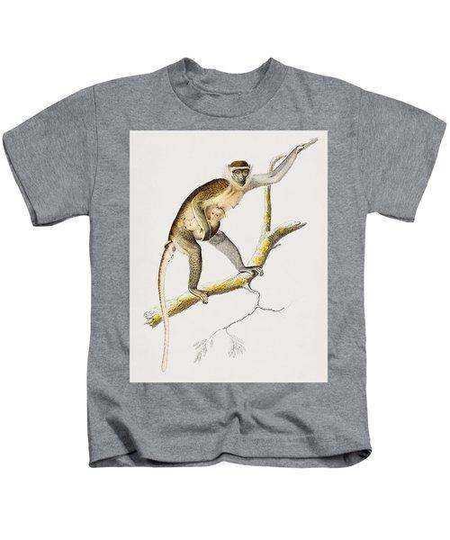 Cercopithecus Griseus  Guenon Grivet  Illustrated By Charles Dessalines D' Orbigny  1806-1876  Kids T-Shirt