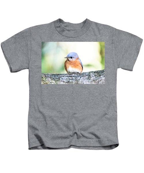 Darling Eastern Bluebird Kids T-Shirt
