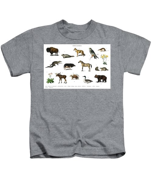 Different Types Of Animals Illustrated By Charles Dessalines D' Orbigny  1806-1876 3 Kids T-Shirt