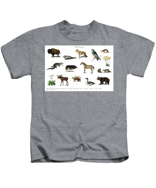 Different Types Of Animals Illustrated By Charles Dessalines D' Orbigny  1806-1876  Kids T-Shirt