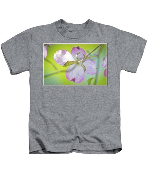 Dogwood Blossom In Spring Kids T-Shirt