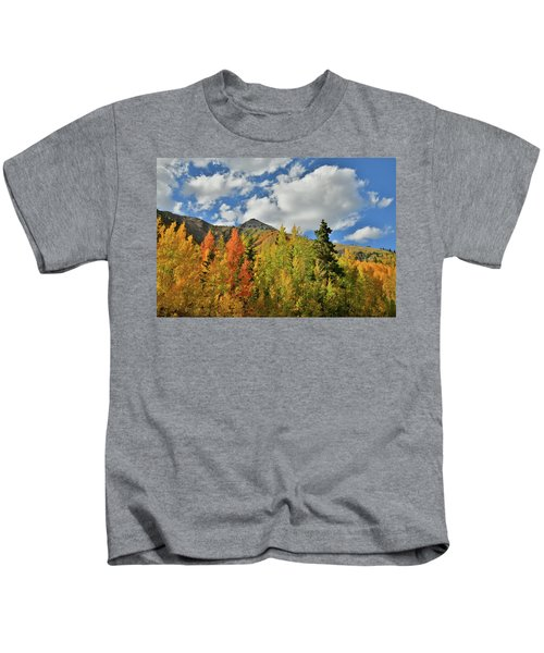 Fall Colored Aspens Bask In Sun At Red Mountain Pass Kids T-Shirt