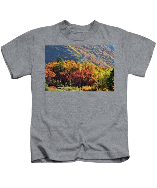 Fall Colors Along Avalanche Creek Road Kids T-Shirt