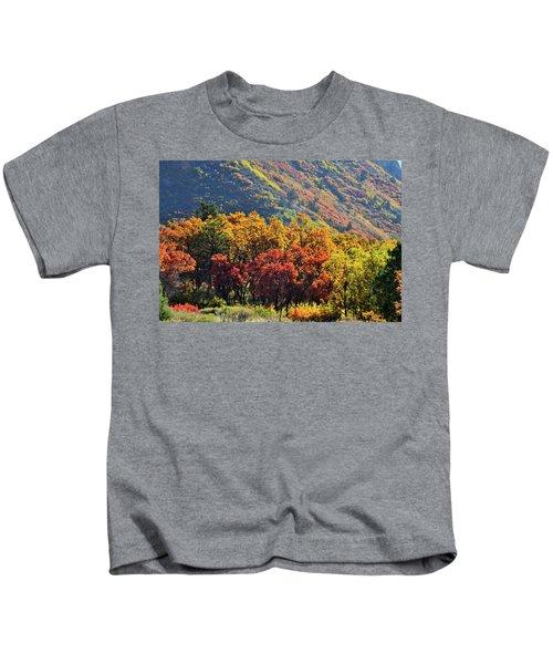 Fall Colors Along Avalanche Creek Road Kids T-Shirt