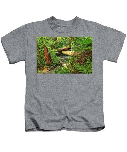 Fallen Trees In The Hoh Rain Forest Kids T-Shirt