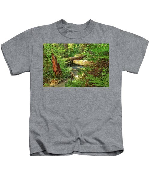Fallen Trees In The Hoh Rain Forest Kids T-Shirt