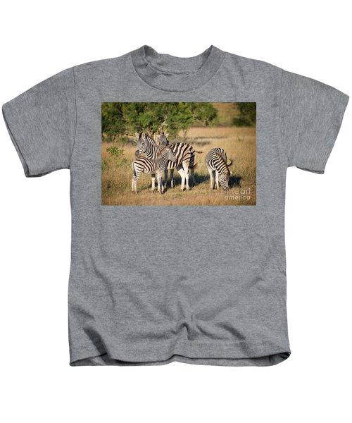 Family Of Zebras Kids T-Shirt
