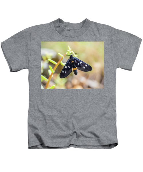 Fegea - Amata Phegea -black Insect With White Spots And Yellow Details Kids T-Shirt