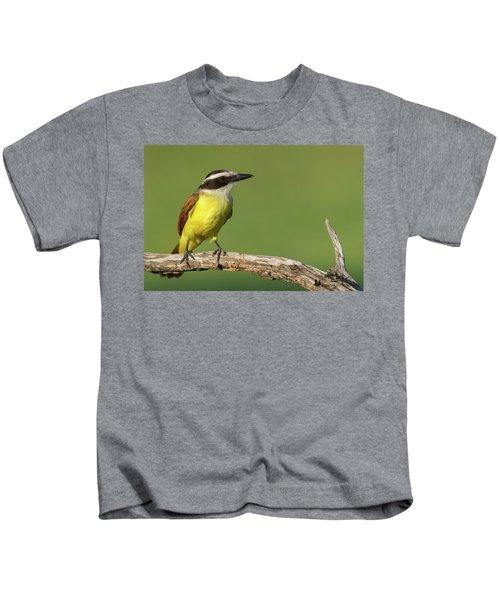Great Kiskadee Kids T-Shirt