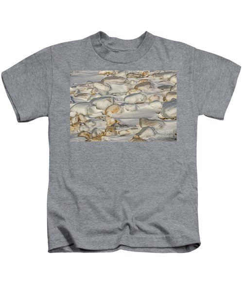 Ice Covered Snow And Sand Kids T-Shirt