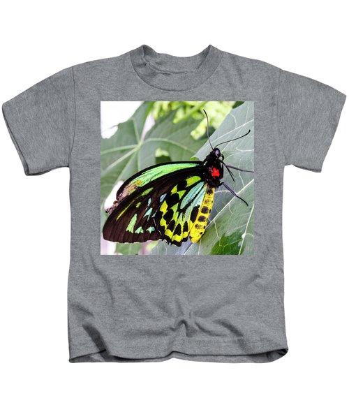 Insect Kaleidescope Kids T-Shirt