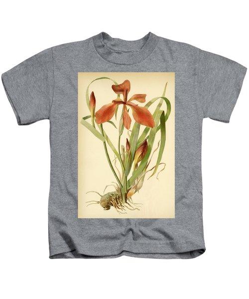 Iris Cuprea Copper Iris.  Kids T-Shirt