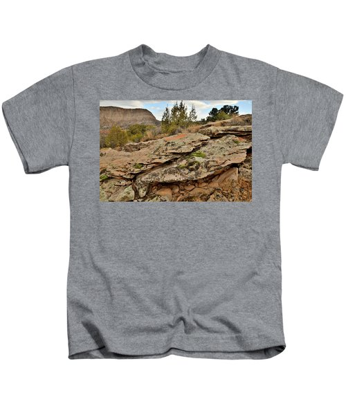 Lichen Covered Ledge In Colorado National Monument Kids T-Shirt