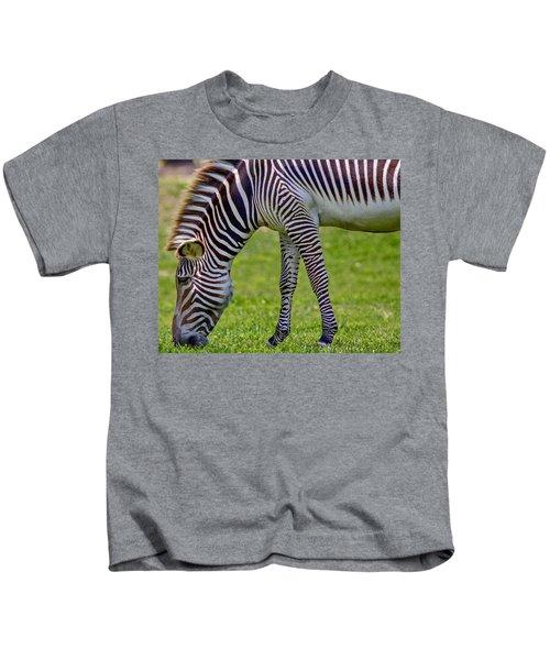 Love Zebras Kids T-Shirt