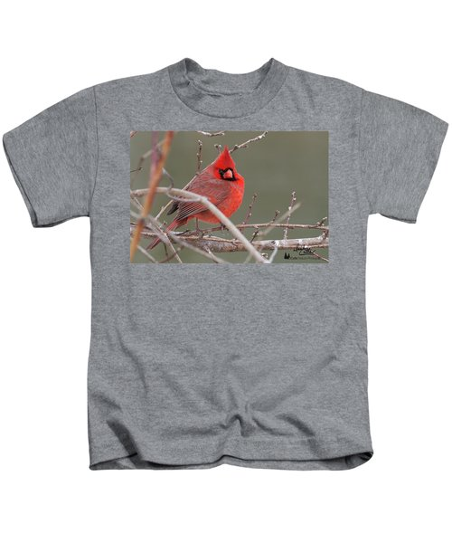 Red In Winter Kids T-Shirt