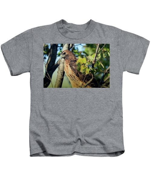 Red-tailed Hawk Looking Down From Tree Kids T-Shirt