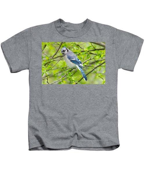 Springtime Bluejay Kids T-Shirt