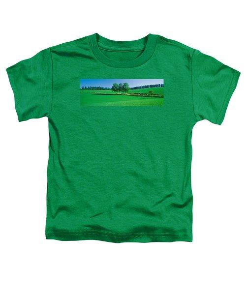 Biei-cho Hokkaido Japan Toddler T-Shirt