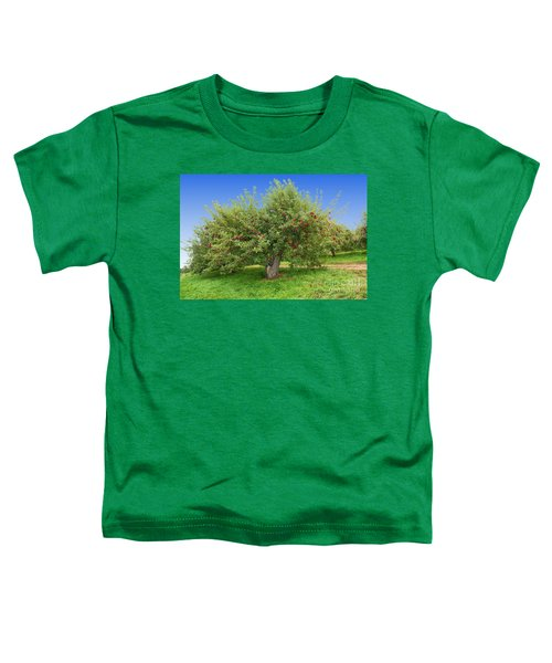 Large Apple Tree Toddler T-Shirt