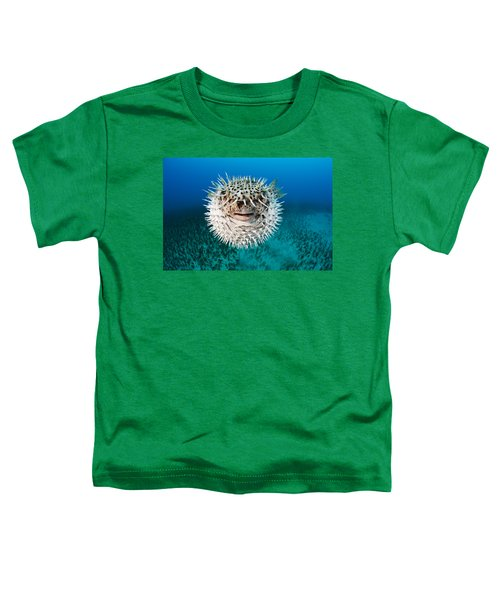Spotted Porcupinefish Toddler T-Shirt
