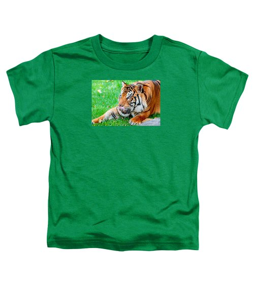Pre-pounce Tiger Toddler T-Shirt