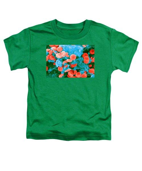 Red Blood Cells, Sem Toddler T-Shirt