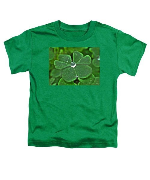 Jewelry Toddler T-Shirt