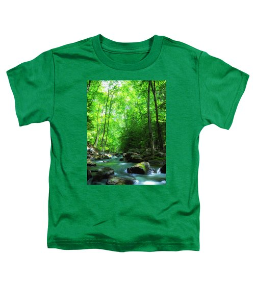 Northwood Brook Toddler T-Shirt