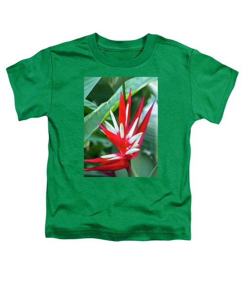 Red And White Birds Of Paradise Toddler T-Shirt