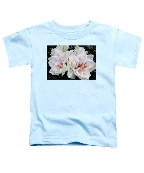 Amaryllis Cluster Toddler T-Shirt