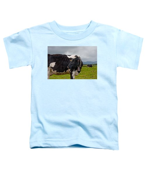 Cow Wearing Cowbell  Toddler T-Shirt