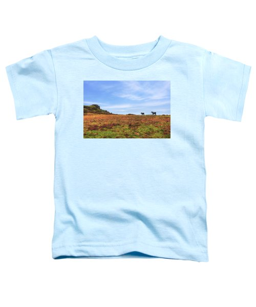 Dartmoor Toddler T-Shirt
