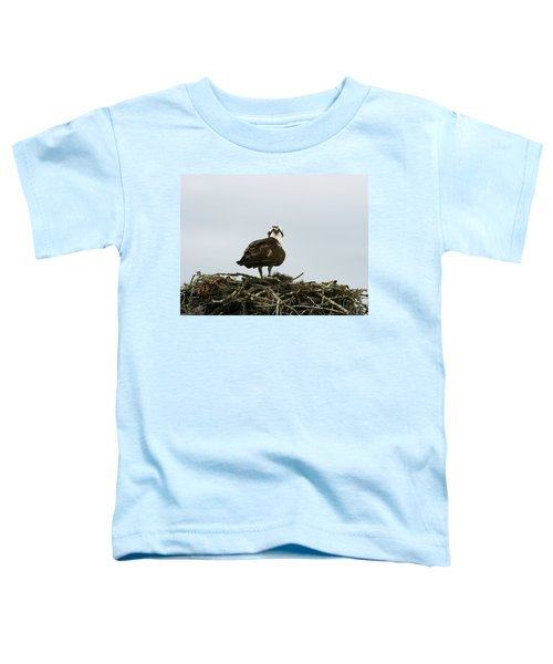 Osprey Nesting Toddler T-Shirt