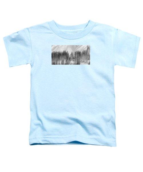 Boney Piles Toddler T-Shirt