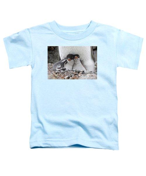 111130p166 Toddler T-Shirt