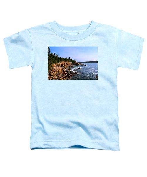 Acadia Coast Toddler T-Shirt