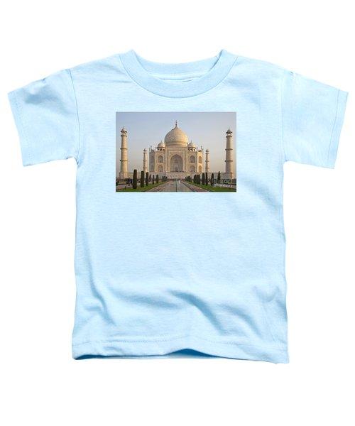 200801p089 Toddler T-Shirt