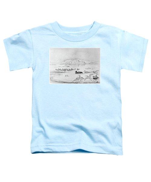 Blackburn Birds, 1895 Toddler T-Shirt
