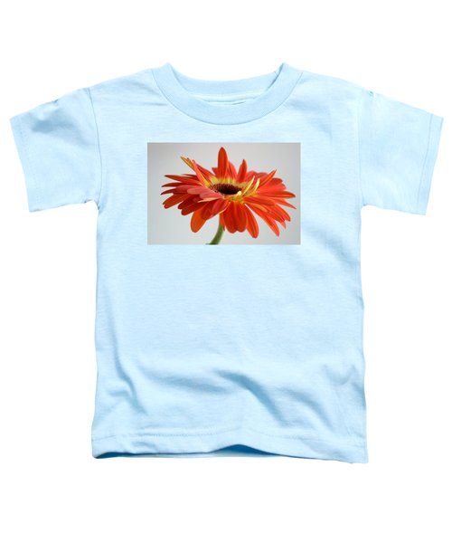 A Beautiful Dream Toddler T-Shirt