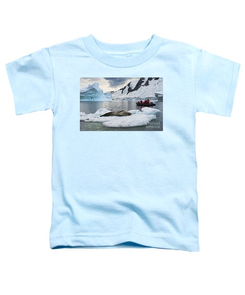 Antarctic Serenity... Toddler T-Shirt