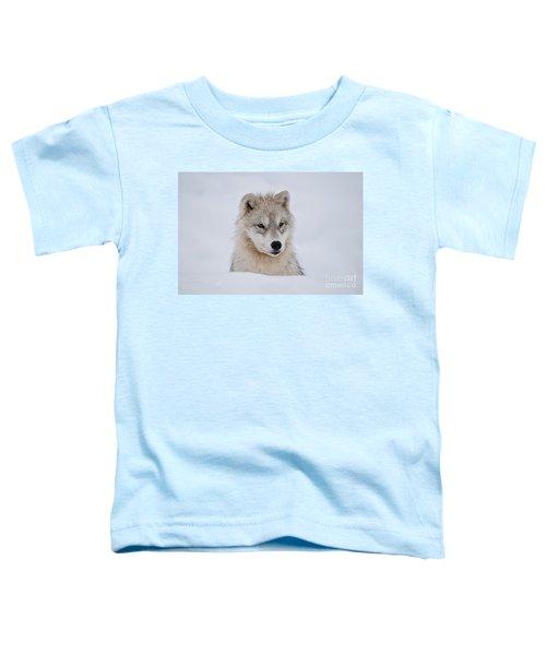 Arctic Pup In Snow Toddler T-Shirt