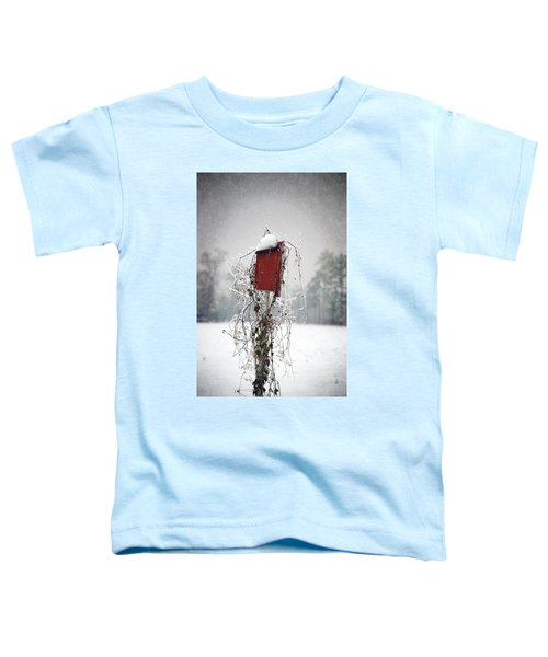 At Home In The Snow Toddler T-Shirt