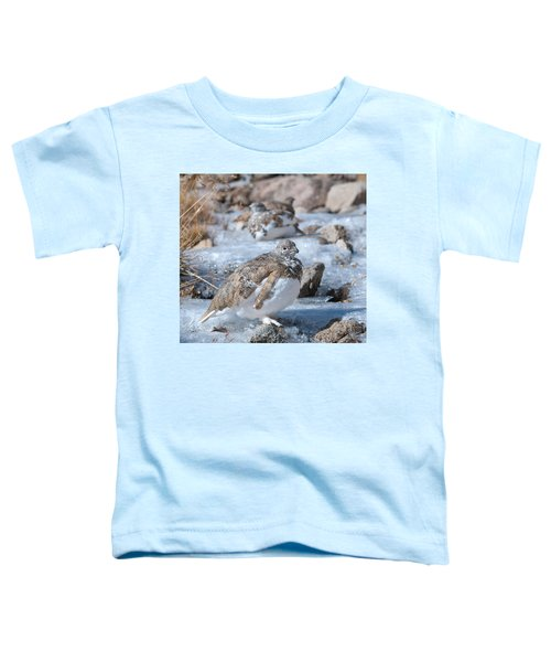 Autumn Plumage White-tailed Ptarmigan Toddler T-Shirt