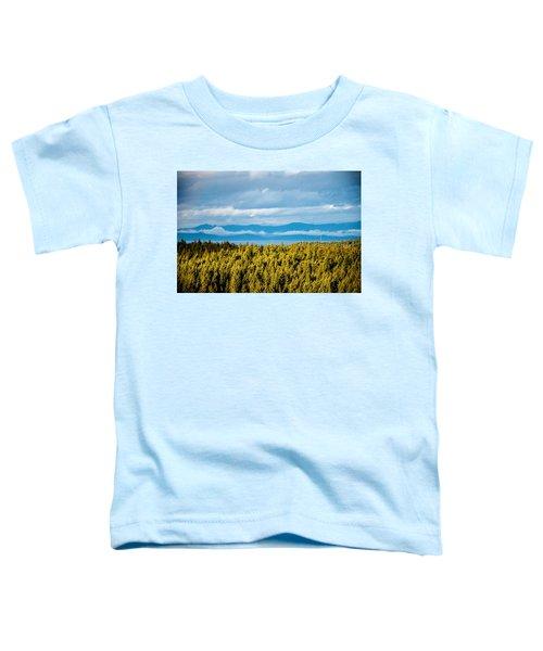 Backroad Ocean View Toddler T-Shirt